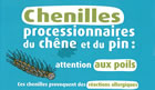 Chenilles th